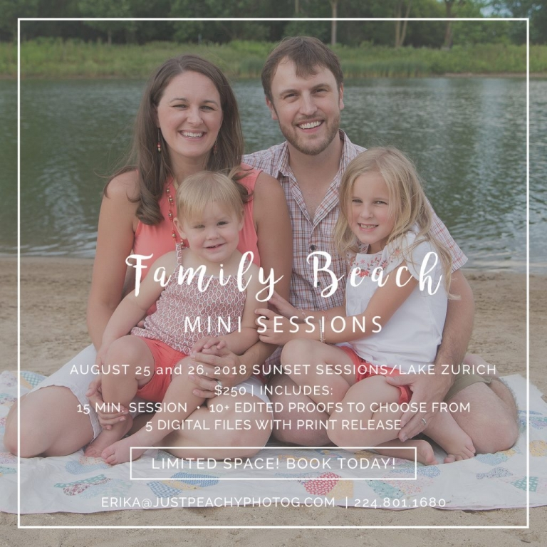 family mini sessions lake zurich
